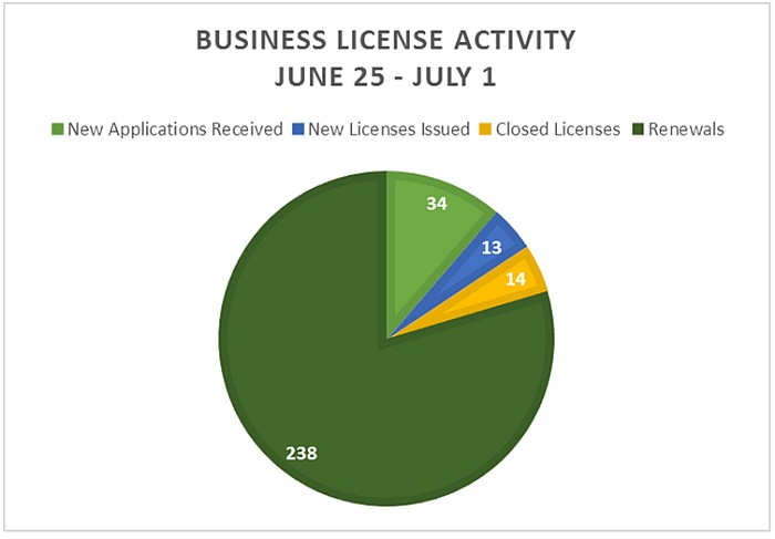 Business License Activity