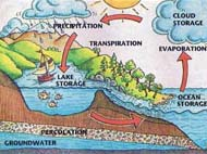 Education - Water Cycle