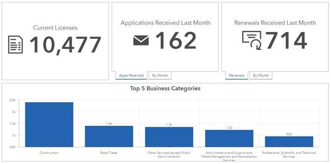 Business License Statistics